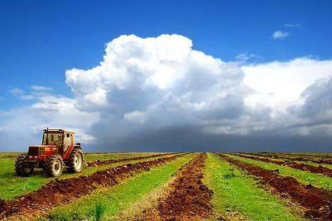 Сельское хозяйство Татарстана дало рост 1,5% за I квартал 2015 года