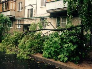 В столице Татарстана продолжается работа по устранению последствий урагана