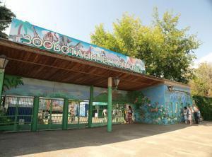 Зооботанический сад столицы Татарстана откроет дом для детей с тяжёлыми заболеваниями