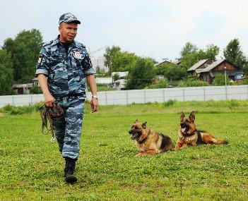 Человек собаке друг: кинологи Нижнекамска отметили свой профессиональный праздник