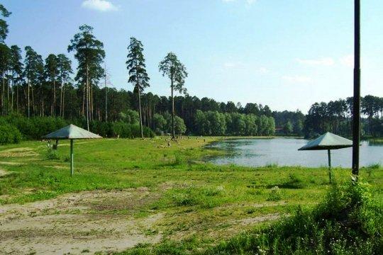 В муниципальную собственность Казани передали 142 зеленых участка города