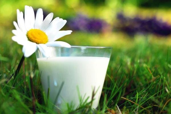 «Молочные реки» Татарстана: удержит ли свои позиции на рынке молока и молочной продукции регион