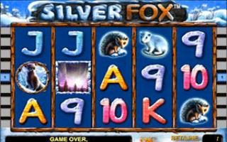 Серебряная лисица в казино Адмирал