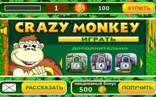 ��� ������������ ����� Crazy Monkey
