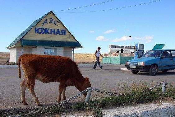 Руководство РФ одобрило повышение акцизов набензин