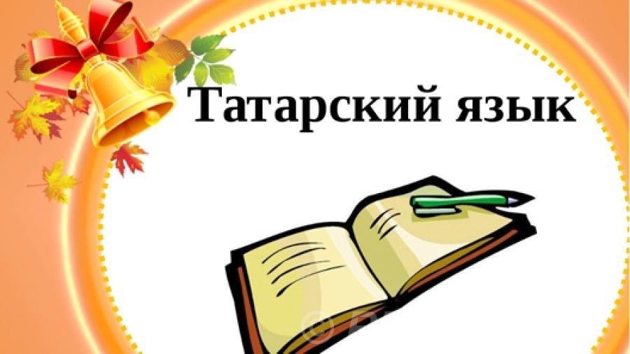 Кремль не пошел на уступки в изучении татарского языка