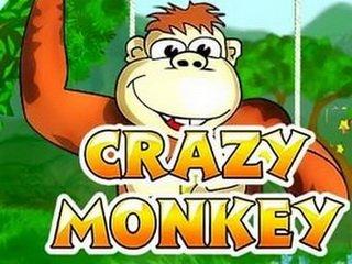 Игровые автоматы crazy monkey отзывы