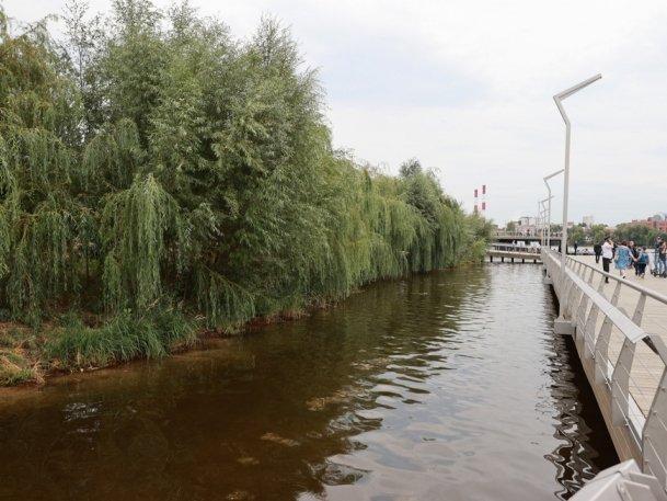 2 тыс. крупномерных деревьев высадили в этом году на Аметьевской магистрали