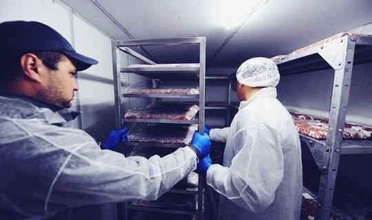 В Нижнекамске будут изготавливать мясные и овощные полуфабрикаты