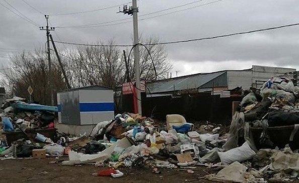 Татарстанские экологи обнаружили свалку ртутных ламп в Черемшане