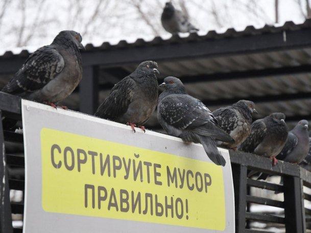 На фестивале «КультТорг» казанцев научат разумному потреблению