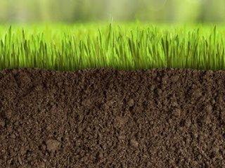 Особенность использования почвогрунта