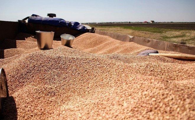 В Татарстане уборка зерновых культур выполнена на 90%