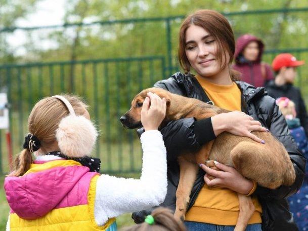 На акции «Лапа дружбы» в парке Урицкого хозяев обрели 4 собаки из приюта